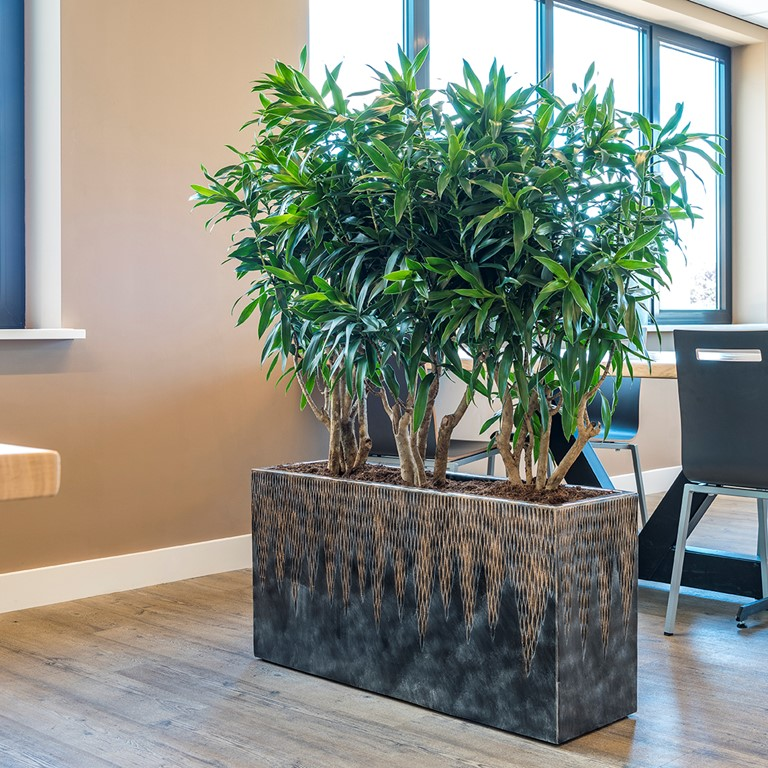 Planter Partitions by Biozenic